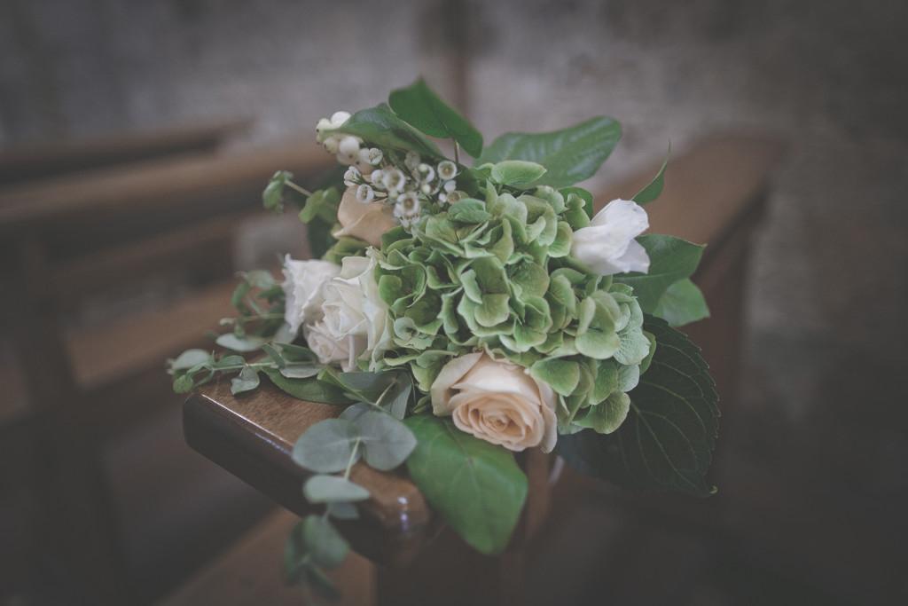 crocus fiori terni