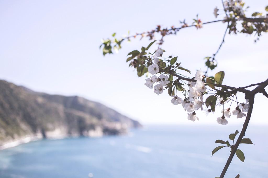wedding Cinque Terre