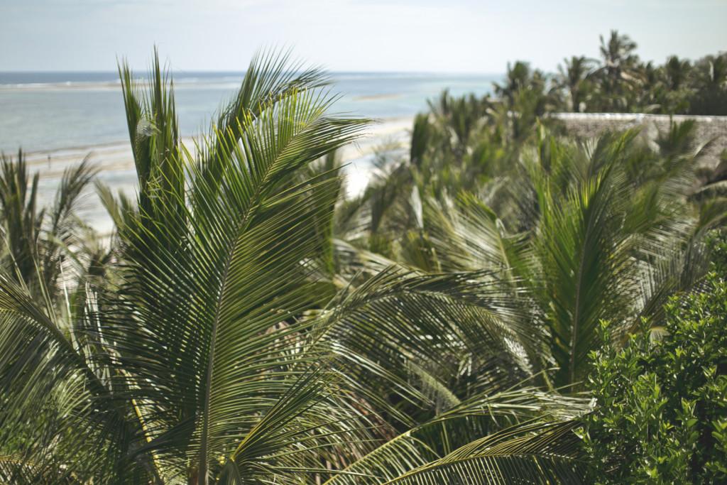 Diani Coast